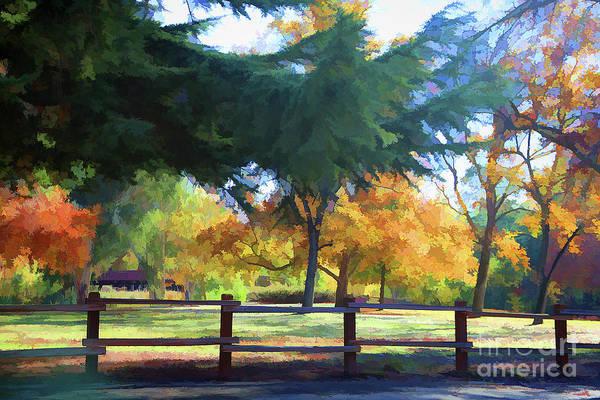 Wall Art - Photograph - Beautiful Colors Of Fall Vasona Park  by Chuck Kuhn
