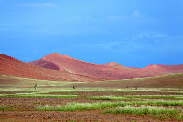 Wall Art - Photograph - Beautiful Colours In The Desert In by Gaston Piccinetti