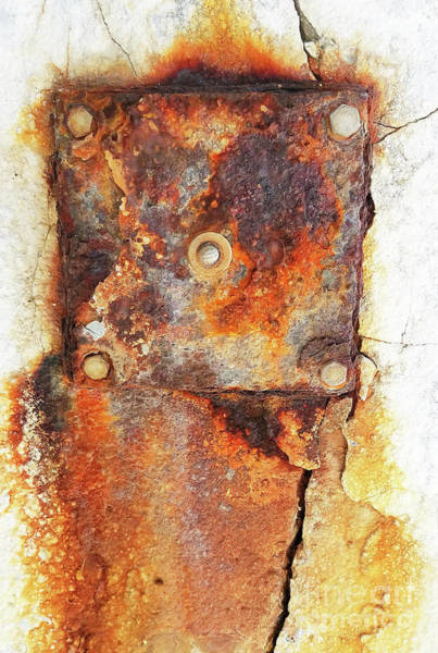 Mottled Mixed Media - Beautiful Decay by Sharon Williams Eng