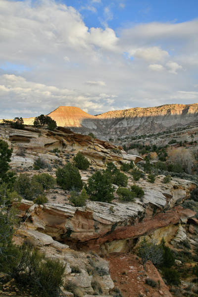 Photograph - Beautiful East Side Of Colorado National Monument by Ray Mathis
