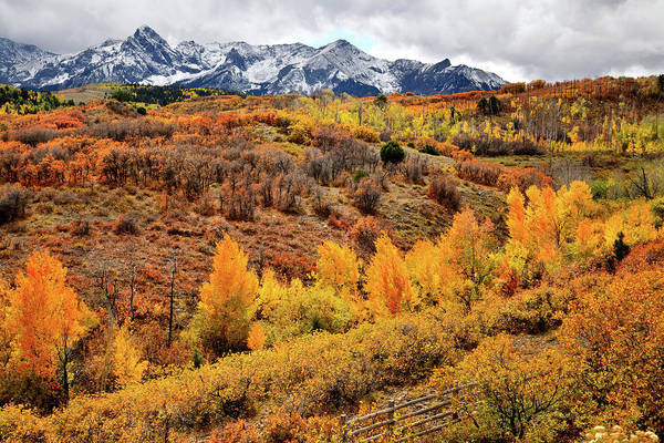 Photograph - Beautiful Fall Colors From Dallas Divide by Ray Mathis