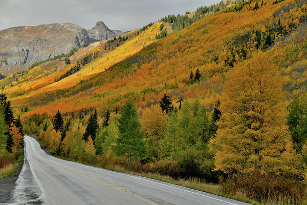Photograph - Beautiful Fall Colors Line Million Dollar Higthway by Ray Mathis
