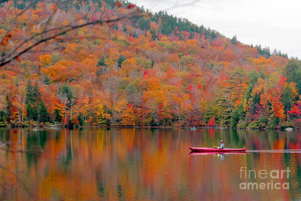 Wall Art - Photograph - Beautiful Fall Landscape With  Lake And by Anastasia Tveretinova