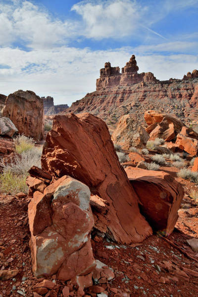 Photograph - Beautiful Field Of Boulders In Valley Of The Gods by Ray Mathis