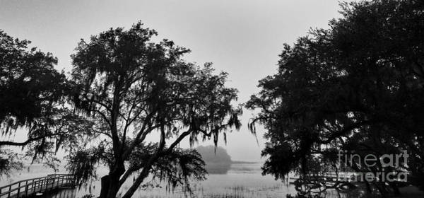 Photograph - Beautiful Fog by Robert Knight