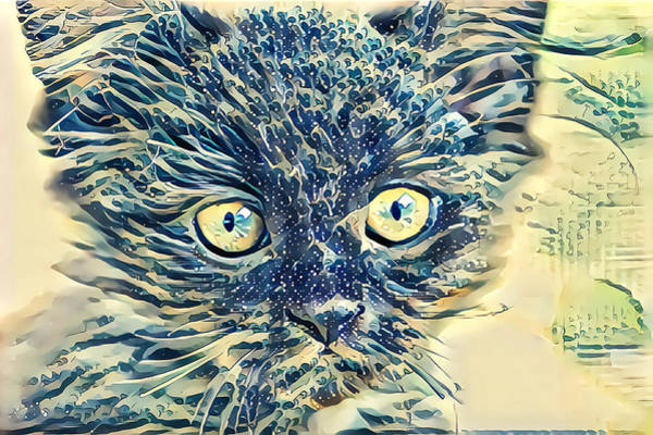 Digital Art - Beautiful Glass Kitten by Don Northup