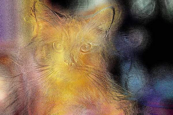 Digital Art - Beautiful Golden Feline by Don Northup