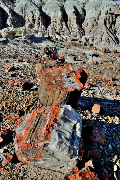 Photograph - Beautiful Jasper Forest Of Petrified Forest Np by Ray Mathis