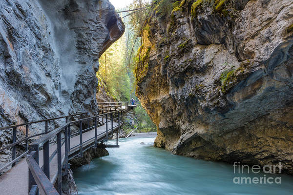 Wall Art - Photograph - Beautiful Johnston Canyon Walkway With by Chase Clausen