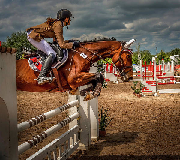 Photograph - Beautiful Jump by Barry Weiss