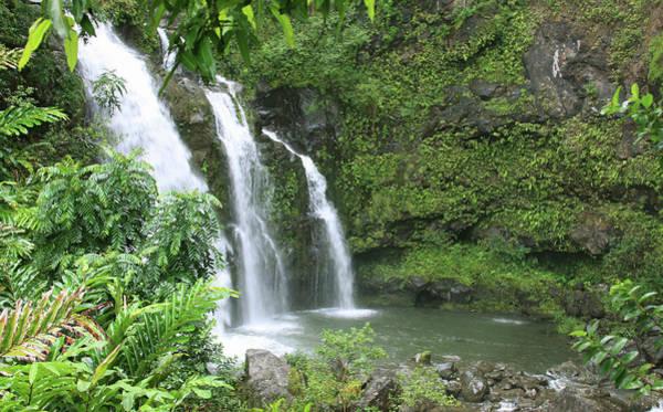 Maui Photograph - Beautiful Maui Hawaii Waterfall by Ejs9