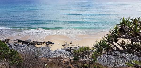 Photograph - Beautiful Noosa Beach  by Cassy Allsworth
