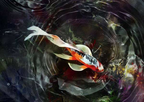 Wall Art - Digital Art - Beautiful Orange Koi Fish With Water Movement  by Scott Wallace Digital Designs