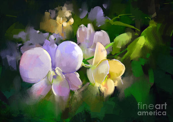 Wall Art - Digital Art - Beautiful Painting Of Orchid by Tithi Luadthong