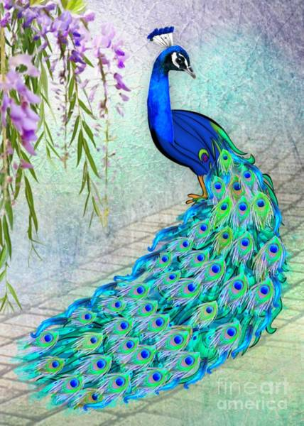 Digital Art - Beautiful Peacock by Morag Bates