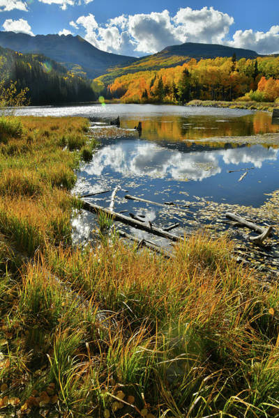 Photograph - Beautiful Reflection Of Fall Colors In Woods Lake by Ray Mathis