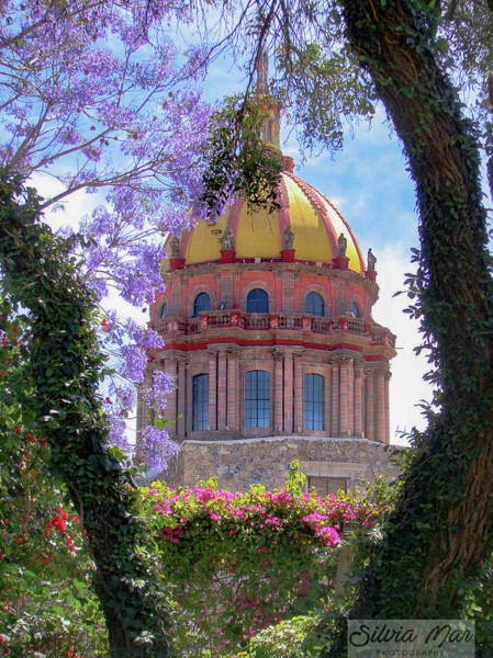 Photograph - Beautiful San Miguel by Silvia Marcoschamer