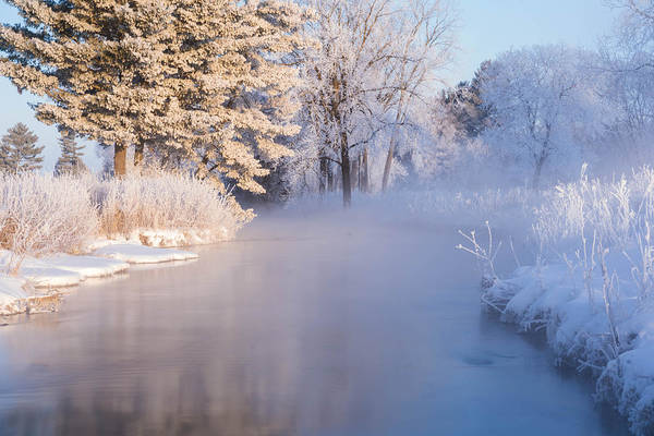 Photograph - Beautiful Snowy Morning by Tailor Hartman