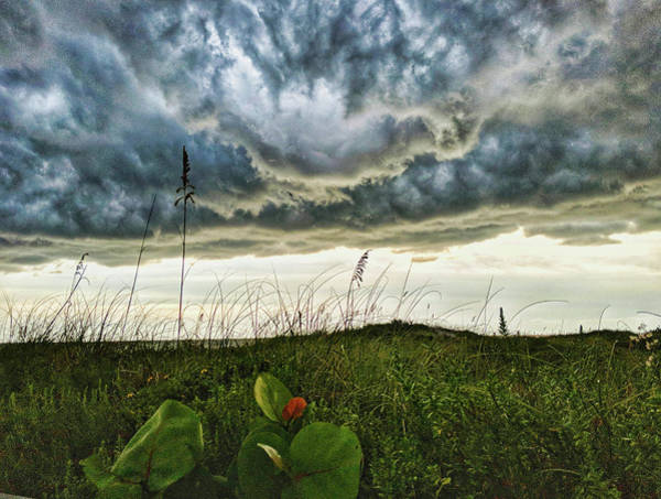 Photograph - Beautiful Storm by Portia Olaughlin