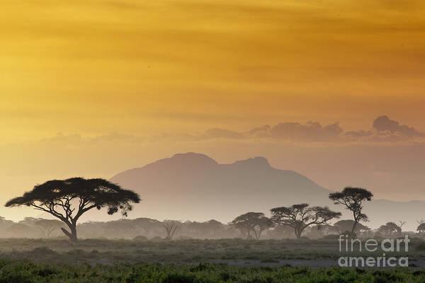 Beautiful Sunset In Kenya 03 Art Print