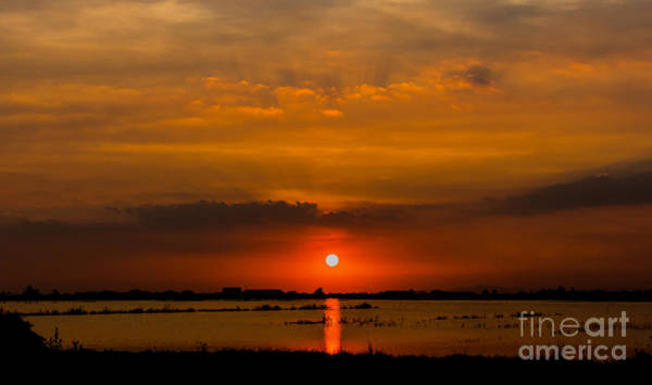 Color Field Wall Art - Photograph - Beautiful Sunset Landscape At Rice by Panompon Jaturavittawong