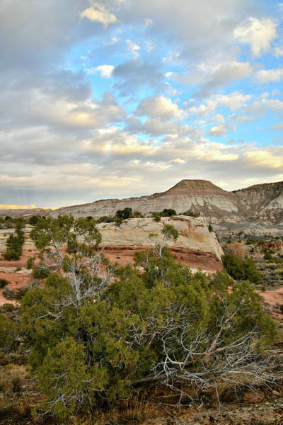 Photograph - Beautiful Sunset Over Rim Rock Drive by Ray Mathis