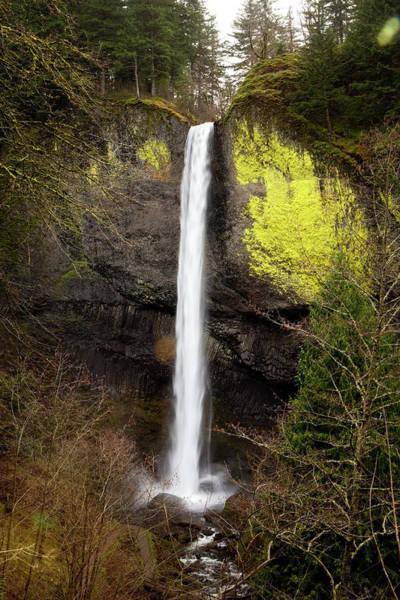 Jordan Pond Photograph - Beautiful Waterfall Surrounded By by Jordan Siemens
