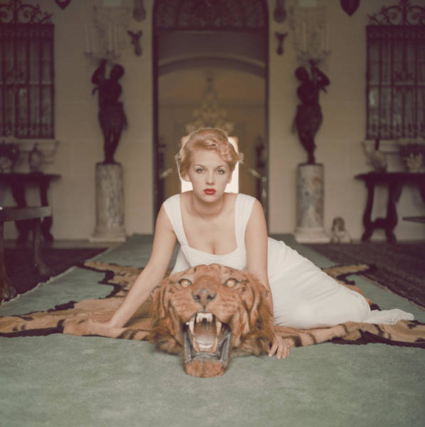 Domestic Animals Photograph - Beauty And The Beast by Slim Aarons