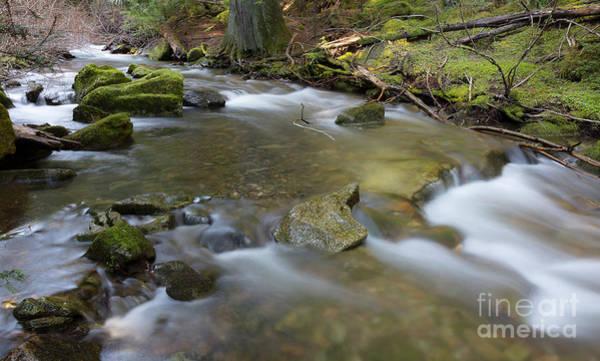 Wall Art - Photograph - Beauty Creek Flow by Idaho Scenic Images Linda Lantzy