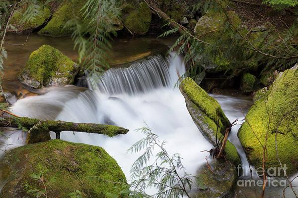 Wall Art - Photograph - Beauty Falls by Idaho Scenic Images Linda Lantzy