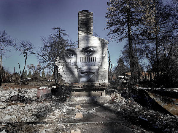 Wall Art - Photograph - Beauty Among The Ashes by Shane Grammer
