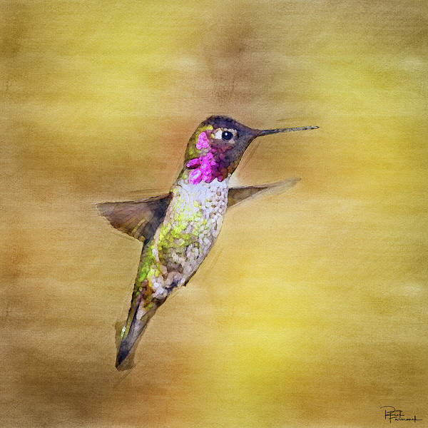 Photograph - Beauty In Midair In Digital Watercolor by Rick Furmanek