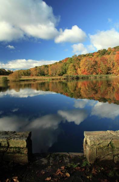 Wall Art - Photograph - Beauty Of Autumn by Karol Livote