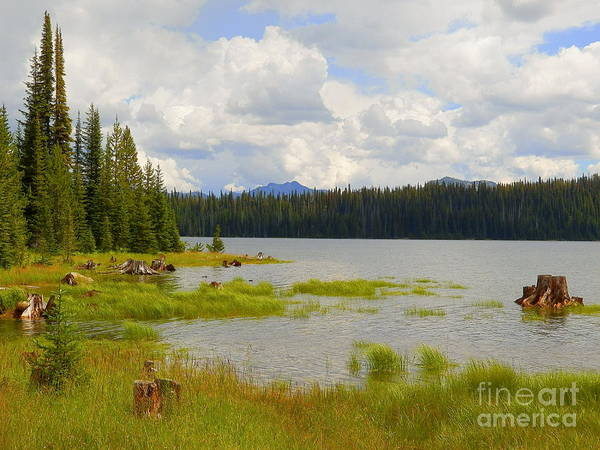 Wall Art - Photograph - Beauty Of The Sweet Mountain Air Payette National Forest  by Art Sandi