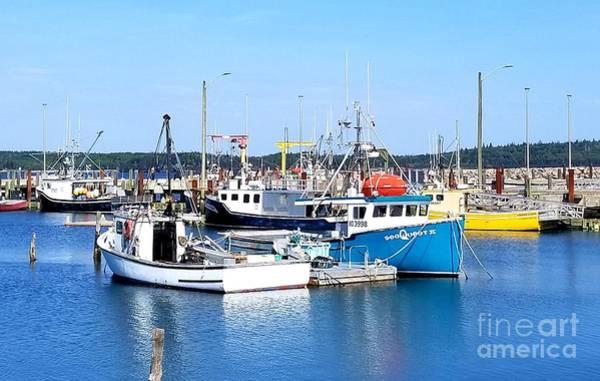 Photograph - Beaver Harbour Nb by Michael Graham
