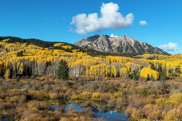 Wall Art - Photograph - Beaver Pond And Fall Foliage And Aspen by Howie Garber
