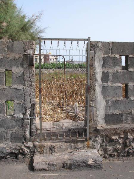 La Gomera Wall Art - Photograph - Bed Spring Gate 02 by John Doyle