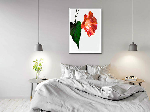 Photograph - Bedroom Mockup To Display Morning Glory by Rosalie Scanlon