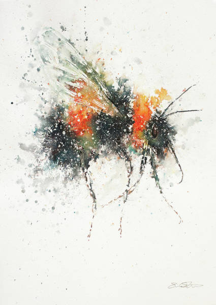Painting - Bee Study by John Silver