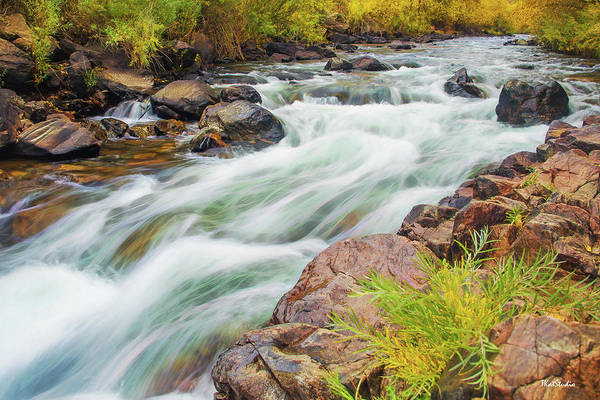 Photograph - Beer Creek by Tim Kathka