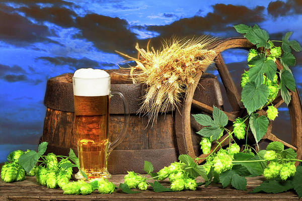 Wall Art - Photograph - Beer Glass With Barley And Hop Cones by Vaclav Mach