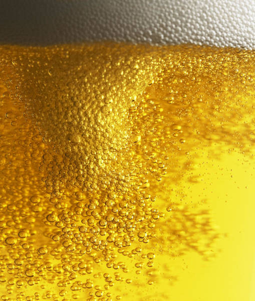 Lager Photograph - Beer With Bubbles And Foam by Jack Andersen