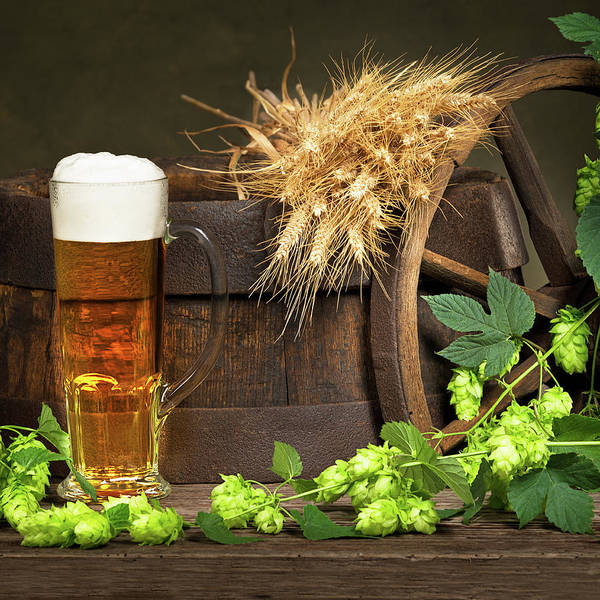 Wall Art - Photograph -  Beer With Raw Material For Beer Production by Vaclav Mach