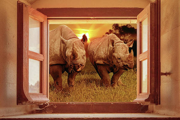 Wall Art - Photograph - Behind The Window In Africa by Jan Fidler