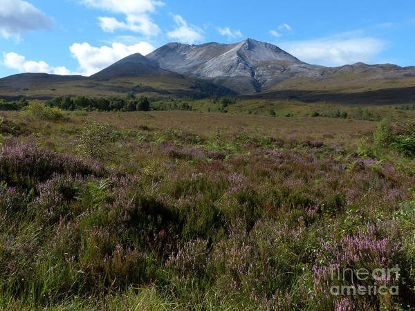 Photograph - Beinn Eighe In September by Phil Banks