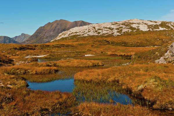Beinn Eighe Photograph - Beinn Eighe Nature Reserve, Scottish Highlands by David Ross