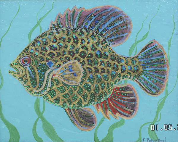 Painting - Bejeweled Bluegill by Todd  Peterson