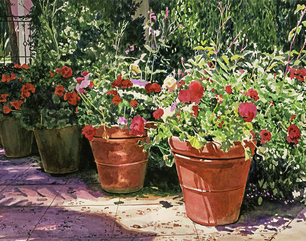 Painting - Bel-air Hotel Container Garden by David Lloyd Glover
