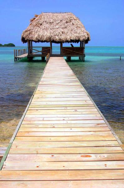 Palapa Wall Art - Photograph - Belize Paradise by Dene' Miles