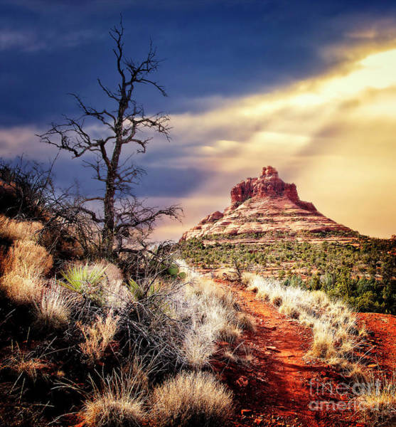 Bell Rock Art Print by Scott Kemper